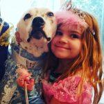 Therapy Dog Marshall Princess Party