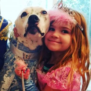 Therapy Dog Marshall Princess Party